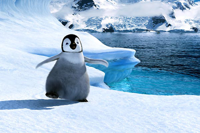 Fotos de la película de Happy Feet